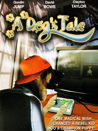 Priča jednog psa