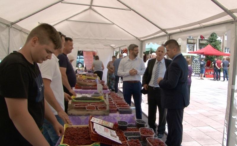 Dani maline u Novom Travniku/ Nikad više uništenih malinjaka i nikad veće cijene malina